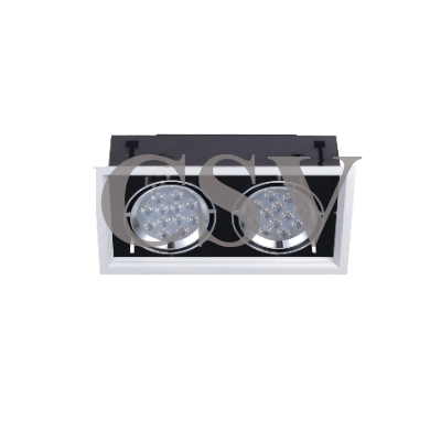 LED grille spotlight 12Wx2