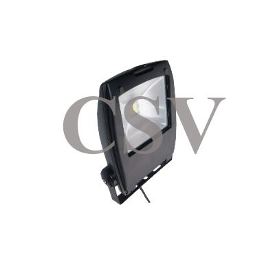 LED BP flood light 30W
